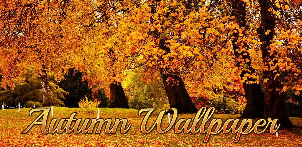 Falling Leaves Live Wallpaper Apk Download Autumn Wallpaper Apk Latest Version App For