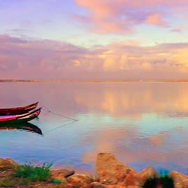 Boats in Ria by Ana Paula Filipe - Transportation Boats ( aveiro, sunset, river, boat, landscape )