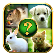 Animals Qui.. file APK for Gaming PC/PS3/PS4 Smart TV