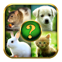 Animals Quiz icon