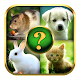 Animals Quiz (game)