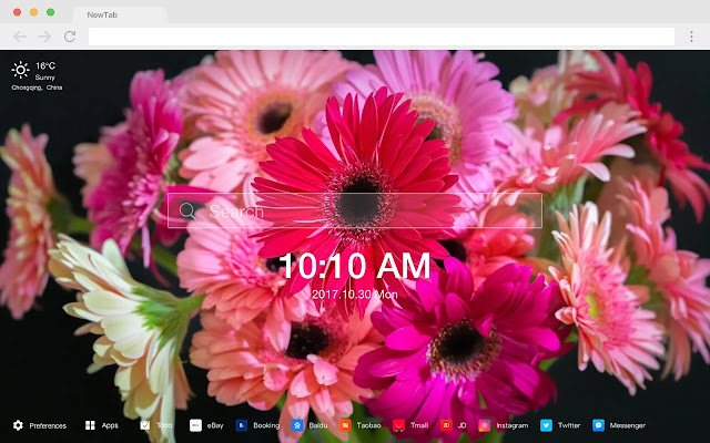 Daisy New Tab Page HD Flowers Theme
