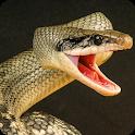 Anaconda Rampage: Giant Snake Attack icon