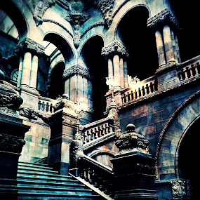 Capitol 02 by Kevin Lucas - Buildings & Architecture Other Interior ( limestone, gothic revival, carvings, elegance, stone, new york, capitol,  )