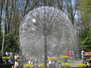 Photo: #016-Le parc floral du Keukenhof.