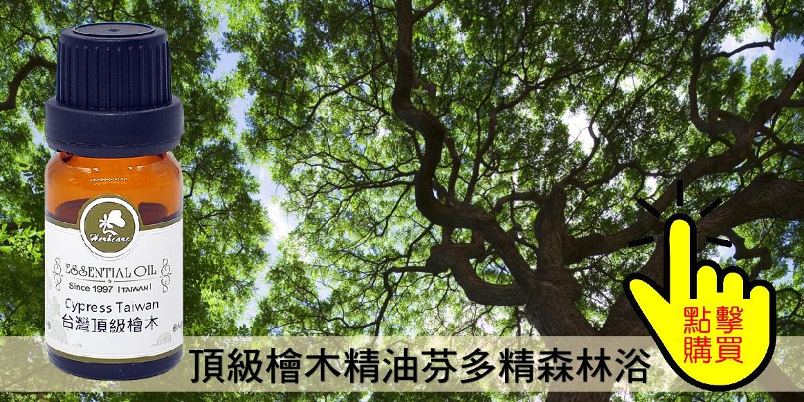 台灣頂級檜木精油