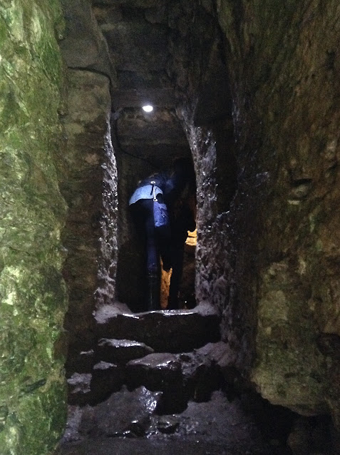 Blarney Castle has lots of rooms still intact, including this narrow passageway to what was once a dungeon!
