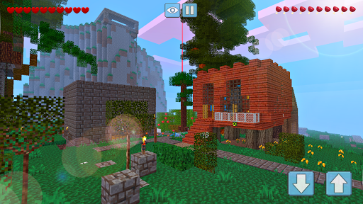Block Craft World 3D Apk 2