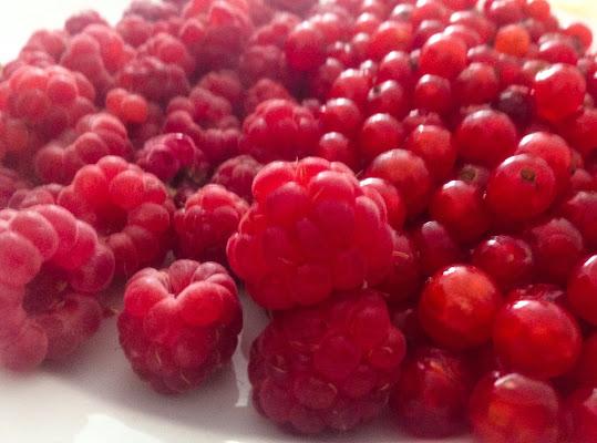 Rosso rosso rosso di peraali