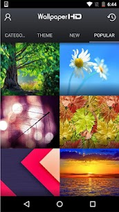 Backgrounds (HD Wallpapers) App Download For Android and iPhone 6