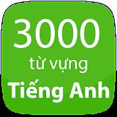 Tải 3000 Từ Vựng Tiếng Anh Thông Dụng APK