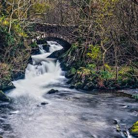 Pack horse bridge by Jim Keating - Landscapes Waterscapes ( bride, waterscape, waterfall, water, trees,  )