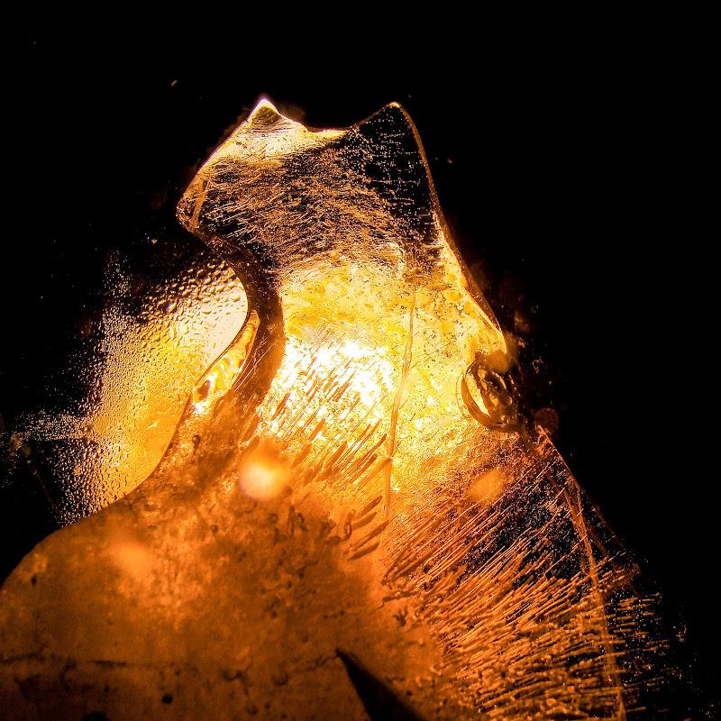 Miao di ghiaccio di roberto_morreale