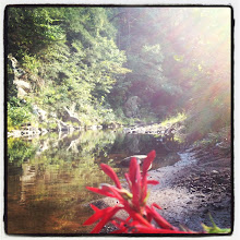 Photo: The swimming hole at the North River near the Stokesville Lodge is very nice.