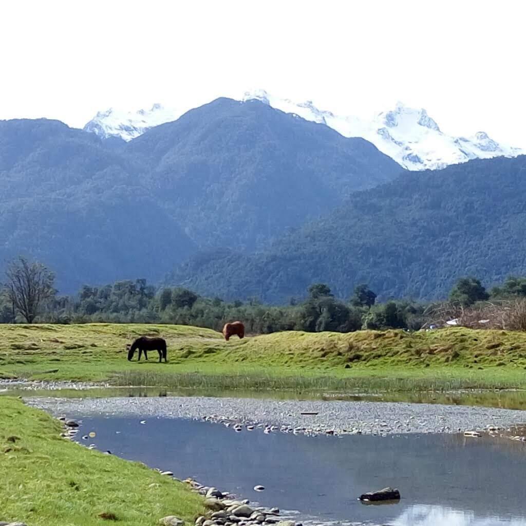hornopiren+los+lagos+lake+region+travel+in+chile.jpg