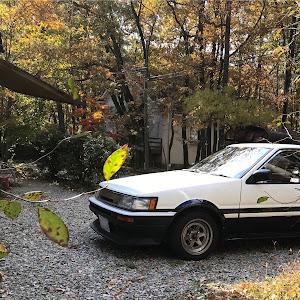 カローラレビン AE86 GT-APEX 61年式のカスタム事例画像 ビン・レビンさんの2018年11月03日15:26の投稿