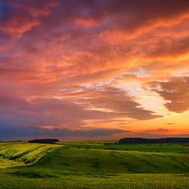20140413_DSC_8820 by Zsolt Zsigmond - Landscapes Prairies, Meadows & Fields ( sky, nature, sunset, hills, meadow, landscape )