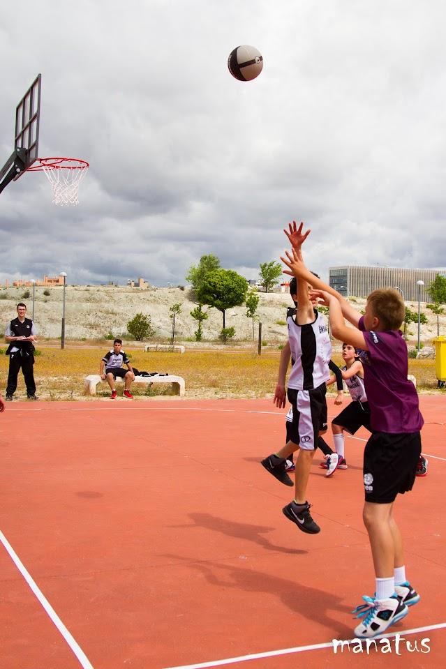 manatus baloncesto