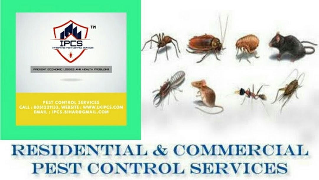 Integrated Pest Control Services - Pest Control Services