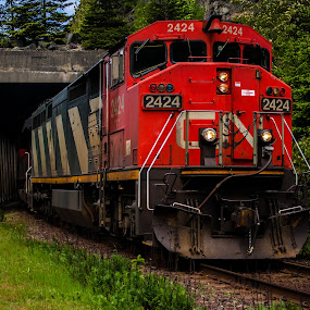 Engine 2424 by Shaun Groenesteyn - Transportation Trains ( red, railway, engine, cn, railroad, rail, transportation, tracks, trains, commercial transport )