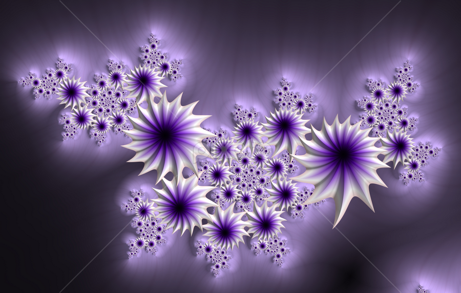 Flowers purple , white by Cassy 67 - Illustration Abstract & Patterns ( digital, love, harmony, flowers, fractal art, abstract art, wallpaper, abstract, fractals, digital art, flower, classic, bloom, white, modern, light, fractal, purple, energy )