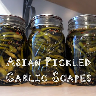 Asian Pickled Garlic Scapes