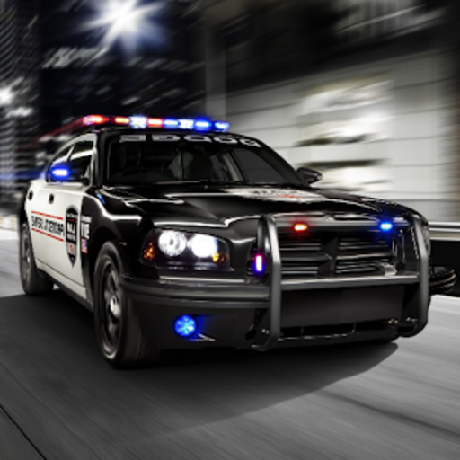 Fast Police Car Driving 3D (game)