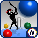 Googly Cricket