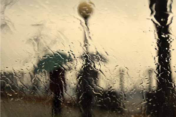 Pensieri di Pioggia di merlino