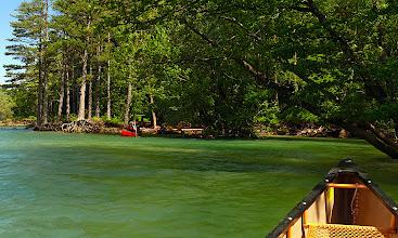 Photo: boschi rigogliosi lamiscono le rive