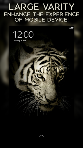 AMOLED Wallpapers | 4K | Full HD | Backgrounds 1.1.2 screenshots 3