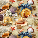 Seashell Wallpapers icon