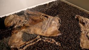 Mummies thumbnail