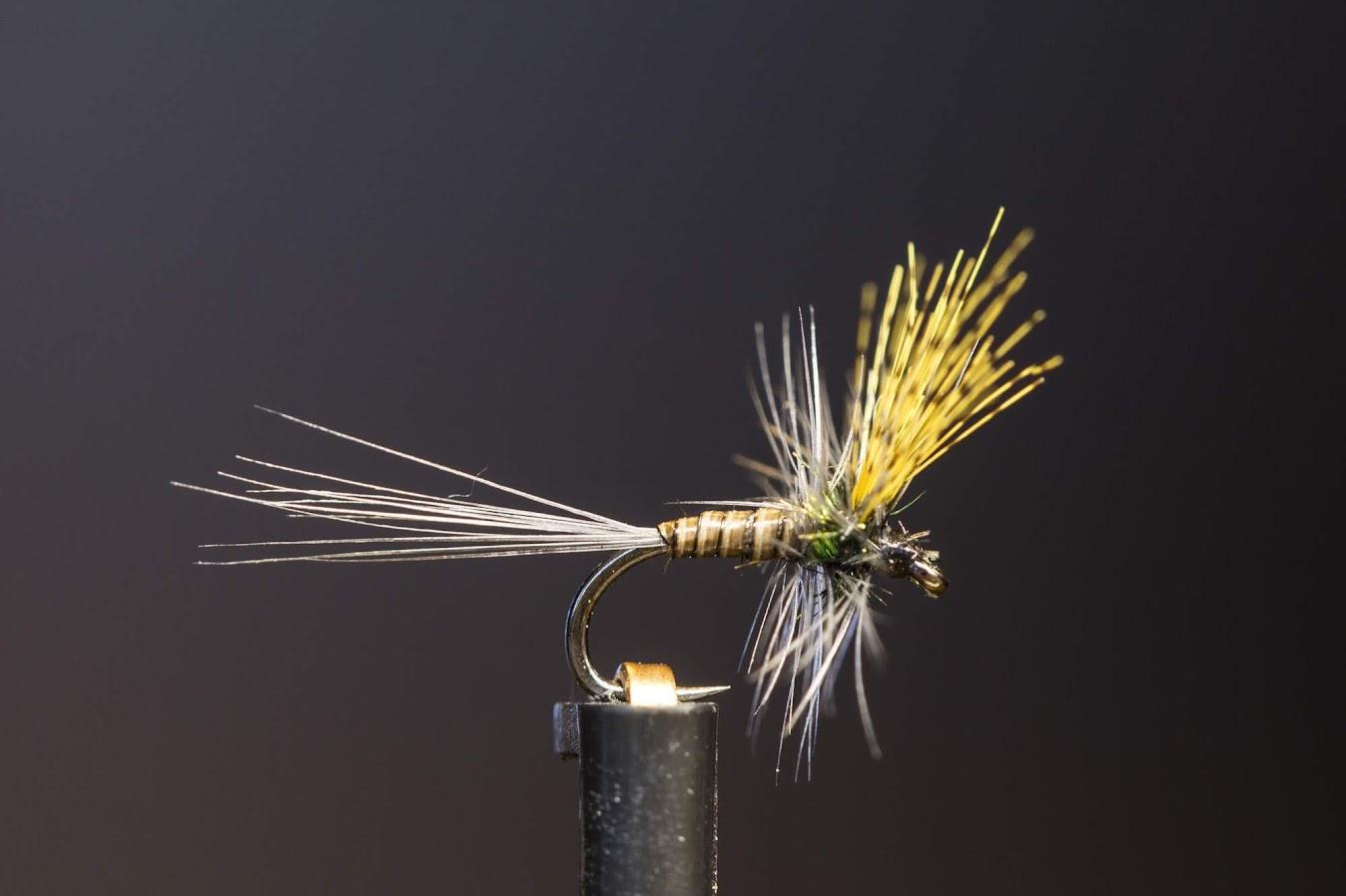 Малки сухи мухи за Черна Гора
