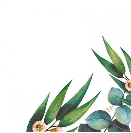 Servetter Eucalyptus