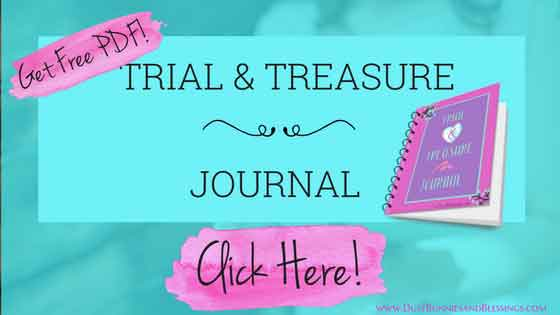 Download my Journal
