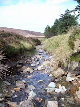 Photo: Stream near Knock...venamon