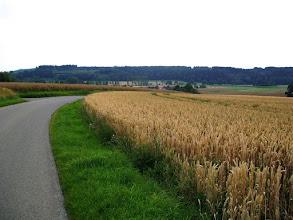 Photo: 8e Dag, donderdag 23 juli 2009 Erpfingen - Obersiggingen Aankomst: ca 16 uur Dag afstand: 98,2 km. Totaal gereden: 763 km. Richting Bodensee.