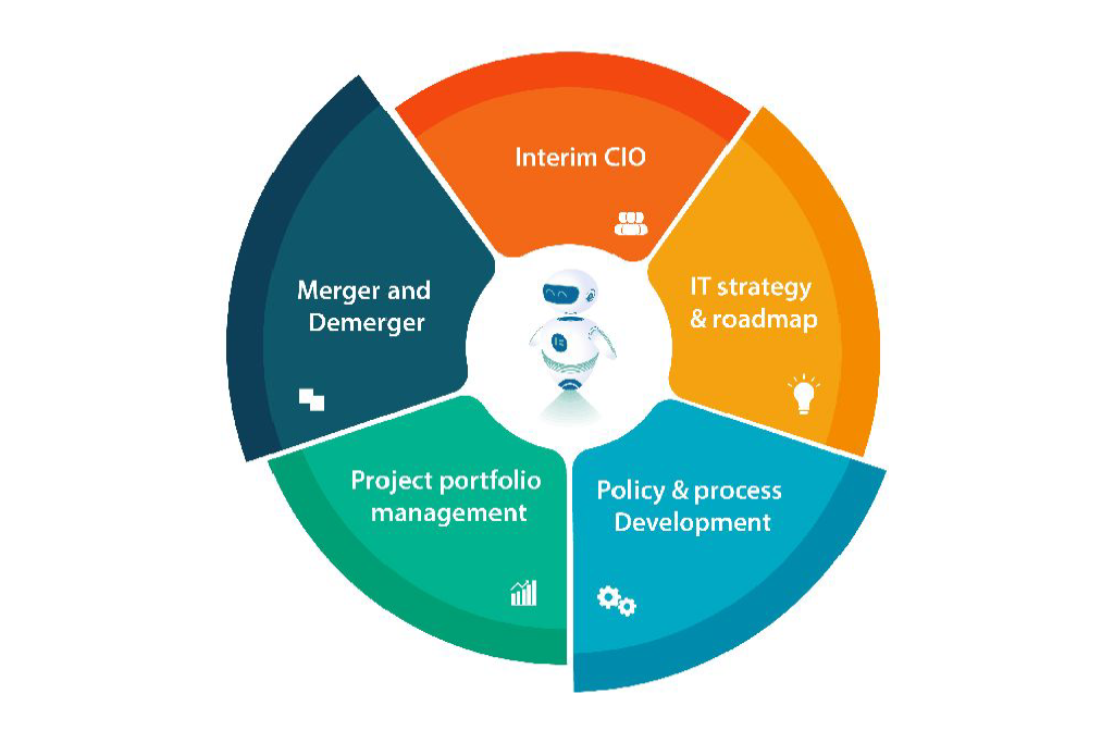 chief information officer consulting- CIO services- patternbots