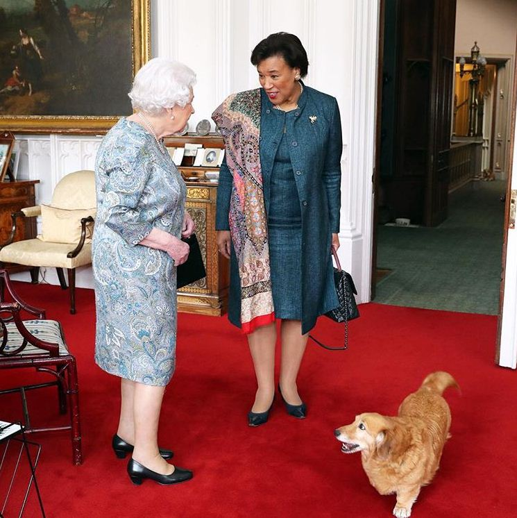 The queen and her dorgi Candy receive the Commonwealth secretary-general, the Baroness Scotland of Asthal, last week.