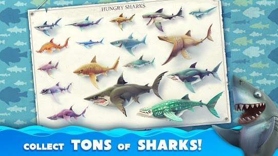 Hungry Shark World (MOD, Unlimited Money, Diamonds) v4.2.0 2