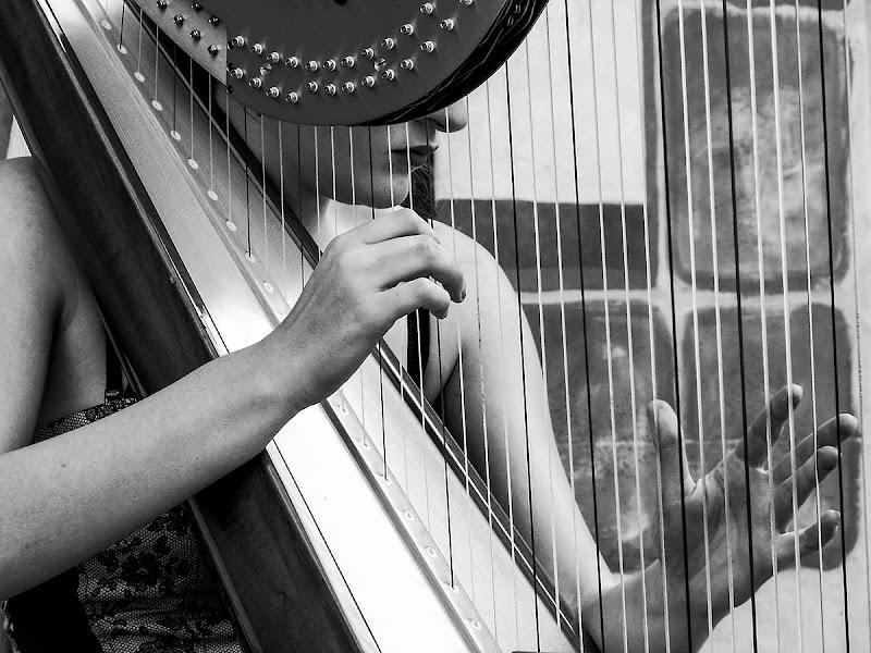 Melodia di Simone De Barba