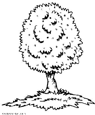 Раскраска зеленое дерево. Напечатать