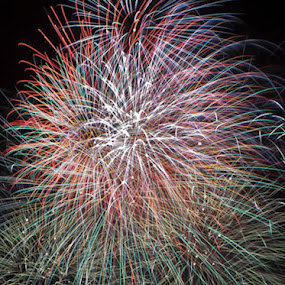 by Alex Newstead - Abstract Fire & Fireworks ( explode, colour, november, red, blast, blue, color, bright, green, fireworks, fire )