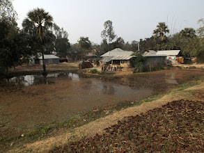 Photo: Landleben auf indisch - am Straßenrand trocknen die Kuhfladen in der Sonne, die später mit Wasser vermischt zum Isolieren der Hütten genutzt werden.
