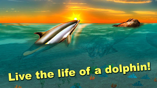 Sea Simulator: Dolphin 3D