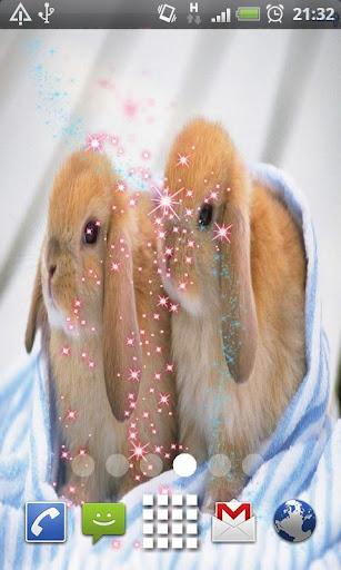 Rabbit Babys Glitter Effects