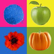 Learning Colors for Kids: Preschool