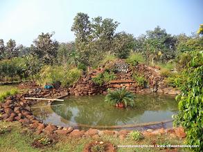Photo: Small Ponds