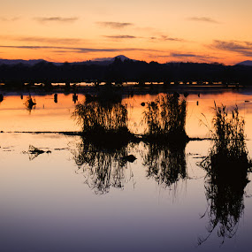Lee valley sunset by Ron n'Roll - Landscapes Sunsets & Sunrises ( romantic, sunset, river lee, ireland,  )